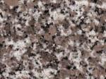 Adelaide Gold Granite Countertops Colors